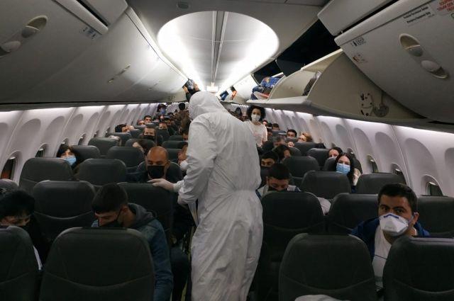 Более 300 украинцев вернулись на Родину из Италии, Армении и Швеции