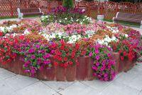 Роскошный цветник в стиле барокко.