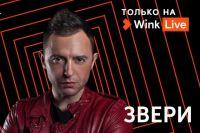 Уже завтра, 1 мая, в 20:00 по московскому времени в видеосервисе Wink на телеканале «Всё ТВ» состоится большой онлайн-концерт группы «Звери».