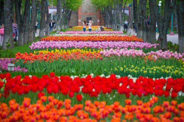 1 мая: праздники и особенности даты, именины, что нужно знать об этом дне