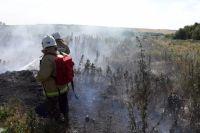 Тюменцам запретили посещать леса из-за угрозы возникновения пожара