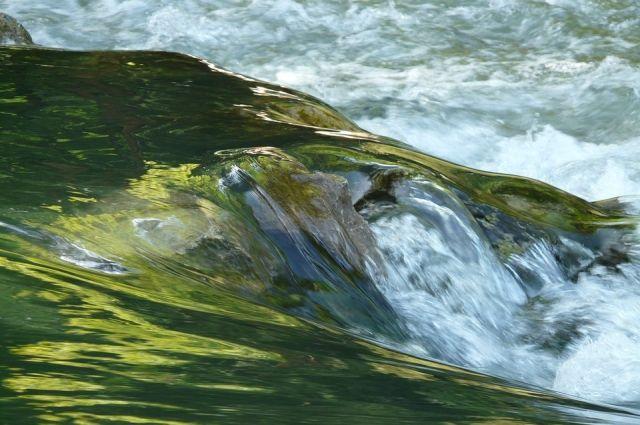 В Новоорском районе сотрудниками полиции на Ириклинском водохранилище задержаны браконьеры.