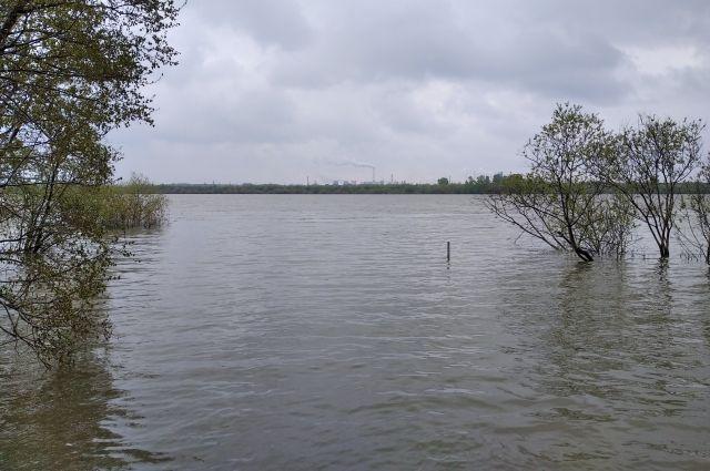 За сутки уровень воды в Томи упал на 108 см.