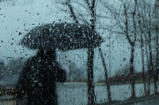 В Киеве прогнозируют ливни: за ночь может выпасть месячная норма осадков