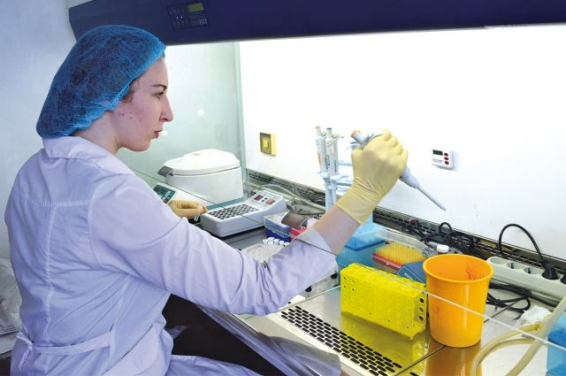 В лабораториях уже разрабатываются многообещающие технологии.