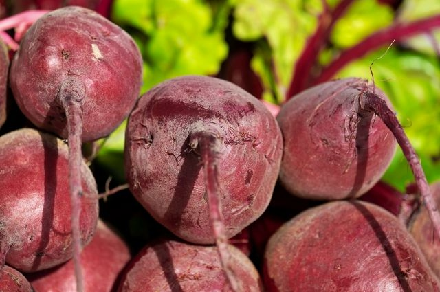 Тюменские дачники начинают высаживать свеклу и морковь