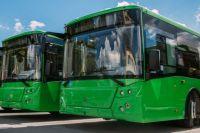 В Тюмени запускают сезонные автобусы для дачников