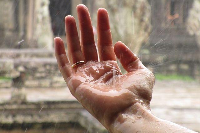 Прогноз погоды на 15 мая: дождливо будет почти на всей территории страны