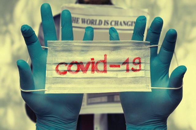 Ежесуточный прирост инфицированных коронавирусом в крае составил 5,6%.