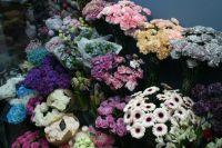 Цветы, закупленные накануне пандемии коронавируса, пришлось раздать или выбросить на свалку.