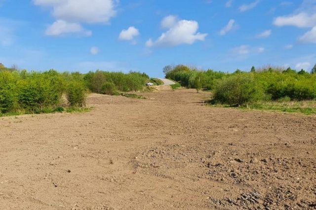 В Зеленоградском районе провели рекультивацию 45 га земель