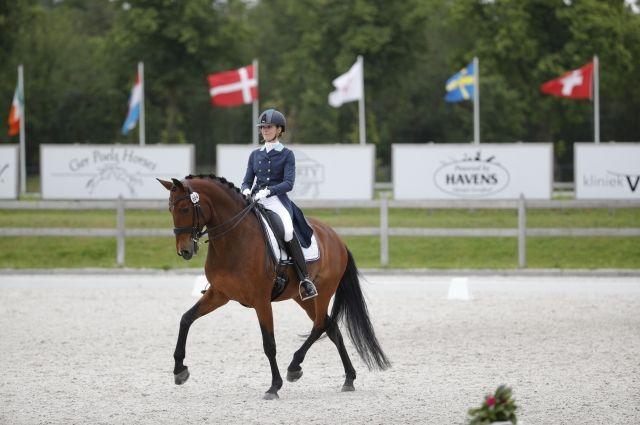 Лошадь Дианы – грациозная красавица Уназале де Масса редкой породы. Диана говорит, что кобыл в конном спорте немного. Но, если найти к ним подход, преданнее партнёра нет.