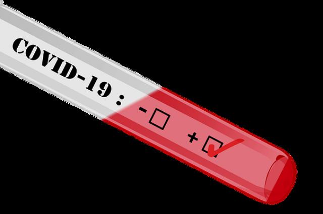 Число произведенных омскими лабораториями анализов на коронавирус составляет 102 743.