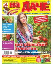 Все болезни томатов: опознать и вылечить!