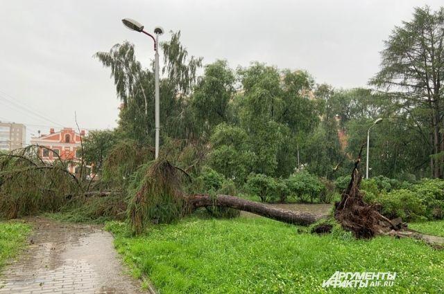 Стоит избегать нахождения возле деревьев, конструкций и линий электропередач.