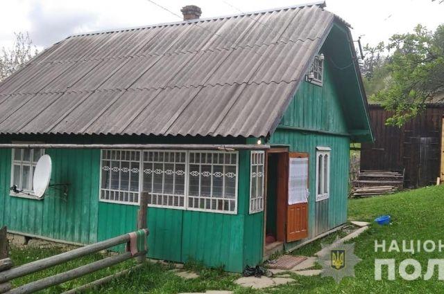 Два дня бил топором: в Черновицкой области мужчина замучил до смерти собаку
