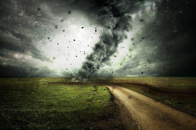 В Кемерове максимальный порыв ветра был зафиксирован в 20:00 часов, он достиг 20 м/с.