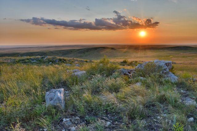 Благодаря созданию заповедных зон и сокращению хозяйственной деятельности человека в оренбургской степи начались уникальные процессы самовосстановления и самообновления.