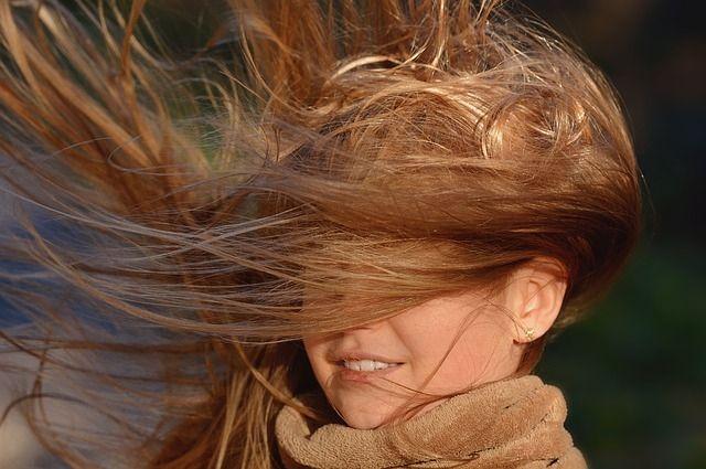 В Оренбурге ветер валит деревья, сносит вывески и дорожные знаки.