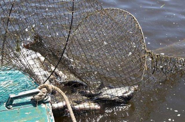 Чиновник Мариупольского отряда морской охраны «крышевал» браконьеров