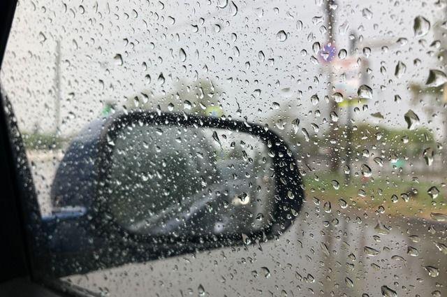 Сильный дождь и порывы ветра ожидаются 1 июня.