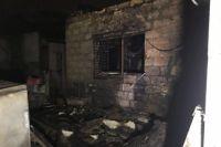В Одессе горел приют для животных: эвакуированы 40 кошек и 350 собак