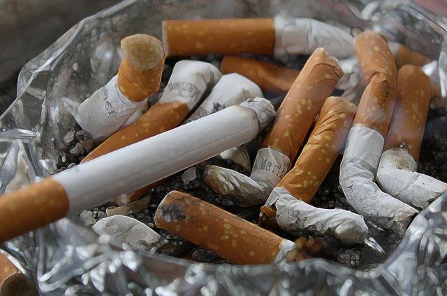 В качестве причины предварительно называют неосторожное обращение с огнем при курении.