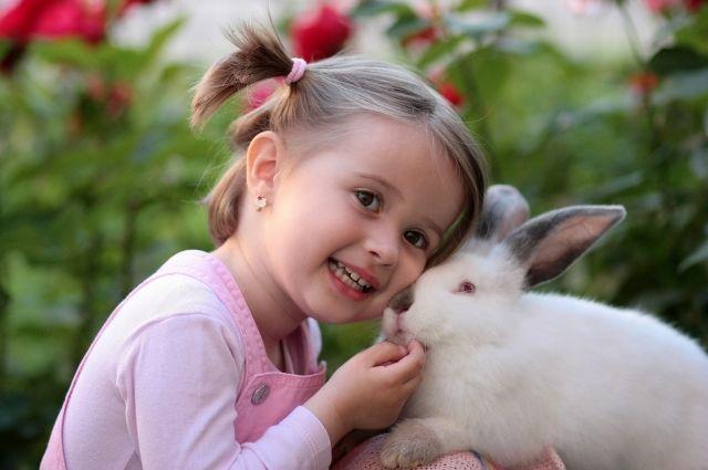 В Ишиме кролик откусил ребенку фалангу пальца