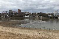 Городской пруд – одно из самых популярных мест отдыха у пермяков.