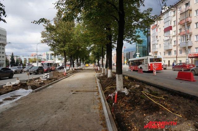 Глава региона распорядился сохранить деревья.