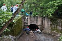 Силами волонтёров сегодня преображаются пермские реки, парки и пустыри.
