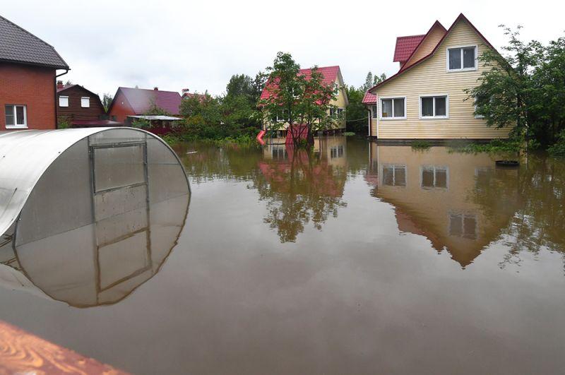 Подтопленный дачный участок из-за разлива реки Воря в Щелковском районе Московской области.