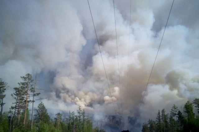 Военная авиация поможет тушить лесные пожары в России
