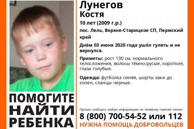 10-летний ребёнок уже несколько дней пробыл в лесу.