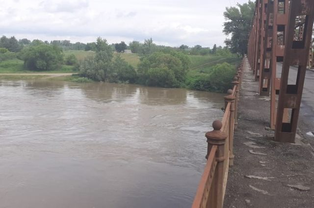В Закарпатской области мужчину унесло течением реки в Венгрию: детали