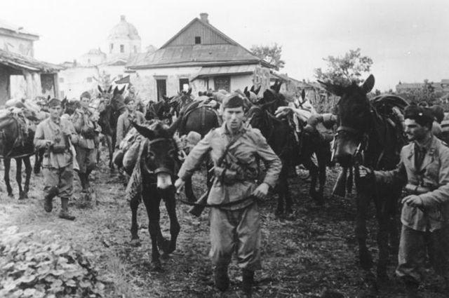 Итальянские войска в России (июль 1942 г.)