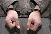 Доманий арест и электронный браслет