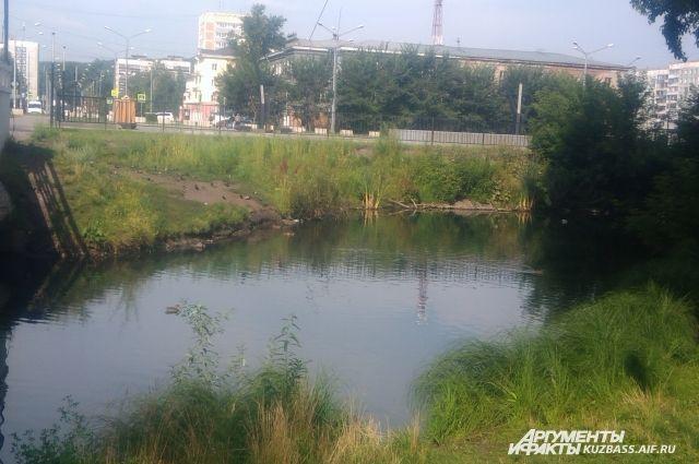 Все реки бассейна будут под контролем, если найдутся средства.