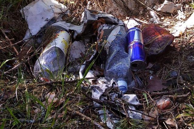 Местным жителям приходится убирать мусор за грибниками в Кимрском районе