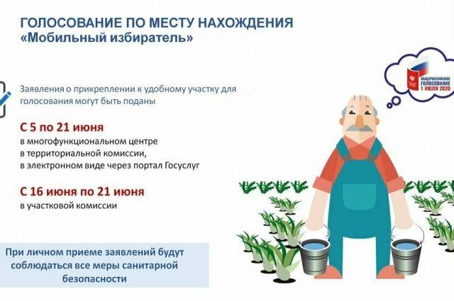 Тюменцы могут воспользоваться проектом «Мобильный избиратель»