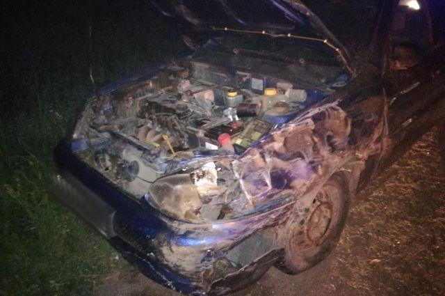 В Удмуртии в ДТП с лосем пострадал водитель ВАЗа