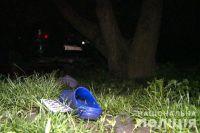 В Винницкой области пьяная женщина сбила четырех детей: подробности