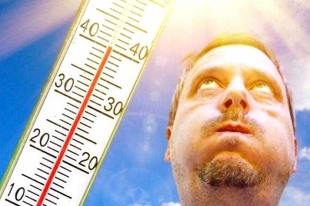 Влияние жары: как сохранить хорошее самочувствие в летнюю пору