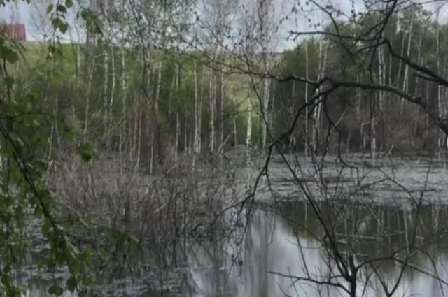 Канализации в поселке Видное нет, отходы сбрасываются прямо в воду.