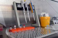 На базе центра «Садко» в Новом Уренгое развернут инфекционный госпиталь