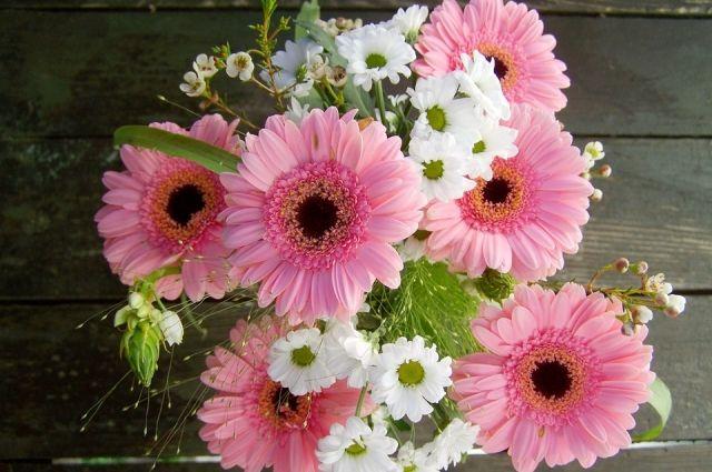 В растениях специалисты обнаружили западный калифорнийский цветочный трипс.