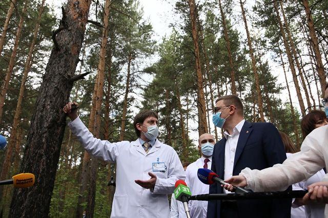 Алексей Текслер указал на то, что при строительстве хирургического корпуса вырубку деревьев надо свести к минимуму.
