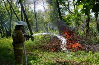 Основная причина лесных пожаров сейчас - сухая и жаркая погода.