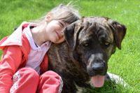 Любовь к животным прививается с детства.