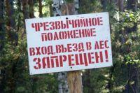 О возгораниях в лесу сотрудники МЧС просят незамедлительно сообщать оперативным службам.